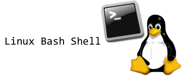 ssh-bash-linux-servers
