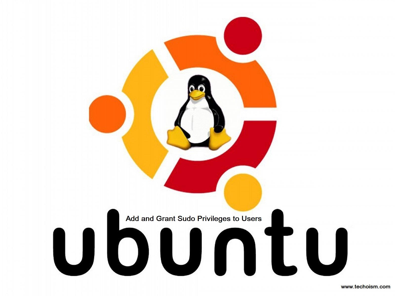 Root Privileges on Ubuntu System