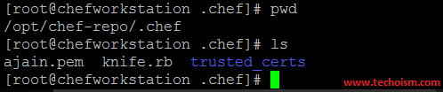 Chef Configuration file